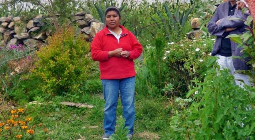 Agua y Vivienda Sostenibles: Mejorando vida Amealco, México