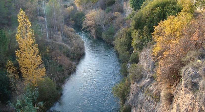 Restaurar vegetación ribera mejorar estado ecológico ríos