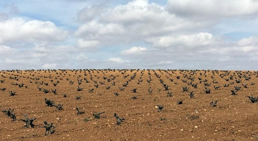 Científicos alertan riesgos salud minería tierras raras