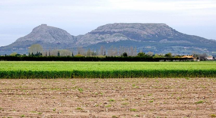 Zona agrícola a los pies del macizo del Montgrí, en el Bajo Ter (Lluís Sala)