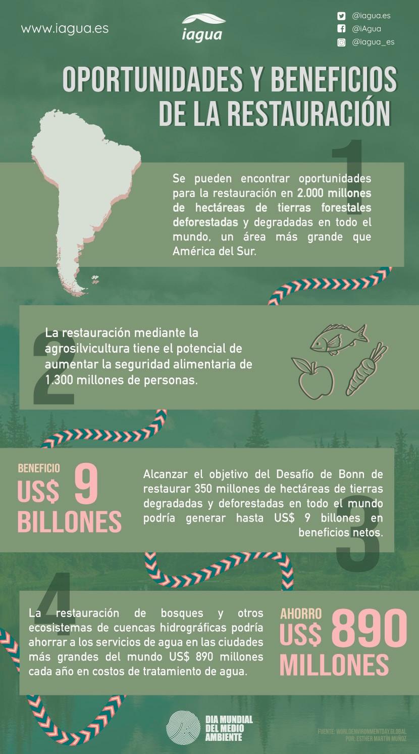 Infografía Día Mundial del Medio Ambiente 2021